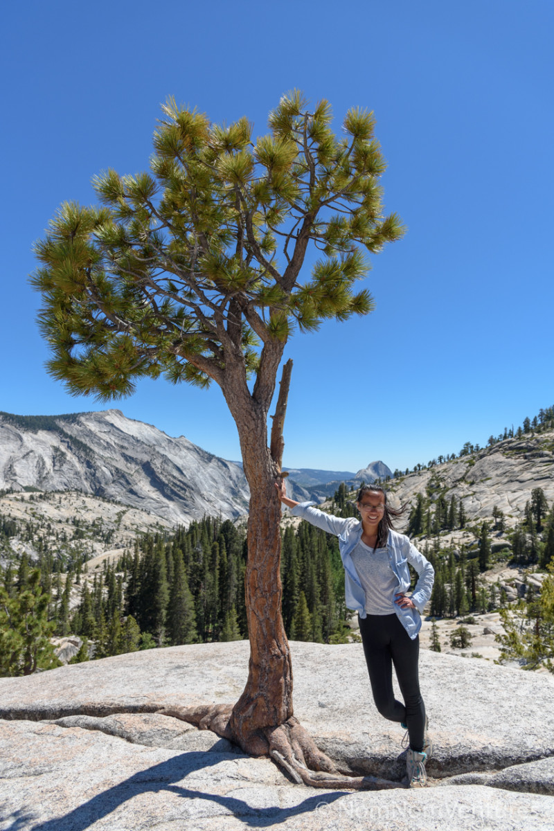 I wanted a picture at Olmsted Point with Half Dome in the background ...